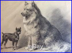 3 Old Original Oil Pencil Signed /vintage Dog /realism
