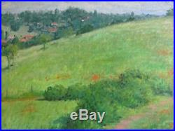 Large Watson Signed Oil Painting Vintage California Blooming Poppies Landscape