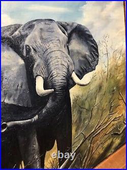 Mid Century Oil On Board Elephant David Shepherd Signed Vintage Art Painting