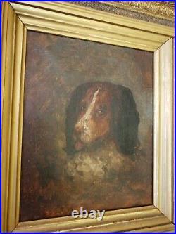 Rare 1800s Vintage Dog Original Oil Canvas Painting Framed Antique Art Estate
