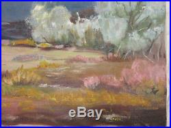 VINTAGE 70s landscape desert original hand painted oil PAINTING signed mountain
