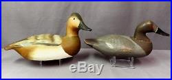 Vintage Pair Hand Signed Ward Bros. Canvasback Decoys- Orig. Paint, Crisfield MD